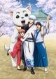 銀魂 銀祭り2019(仮)
