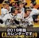 卓上 阪神タイガース 2020 カレンダー