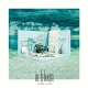 in bloom(アート盤)(DVD付)