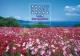 死ぬまでに行きたい!世界の絶景 日本編 2020 カレンダー
