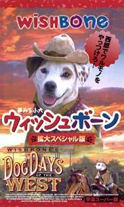 クリスティ・アボット『夢みる小犬ウィッシュボーン』