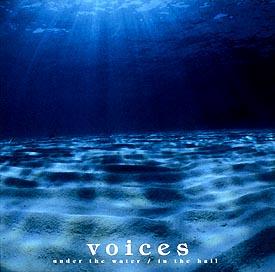 voices ダウンロード