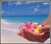 花~すべての人の心に花を~