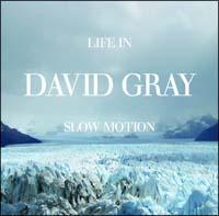 デヴィッド・グレイ『ライフ・イン・スロー・モーション』