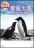 「どうぶつ奇想天外!」presents南極大陸・アデリーペンギン子育て物語[VIBY-5071][DVD]