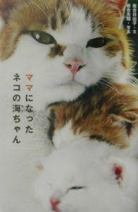 ママになったネコの海ちゃん