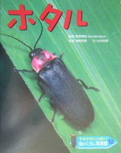 虫のくらし写真館