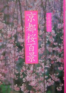 京都桜百景