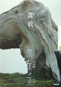 『盆栽』NHK「美の壷」制作班