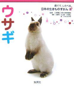 育てて、しらべる日本の生きものずかん ウサギ