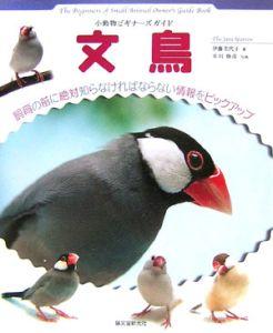 小動物ビギナーズガイド 文鳥