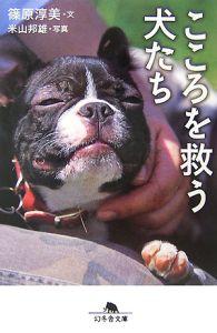 こころを救う犬たち