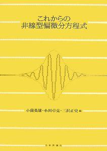 小薗英雄『これからの非線偏型微分方程式』