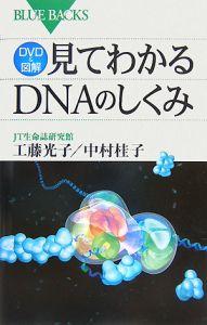 DVD&図解・見てわかるDNAのしくみ