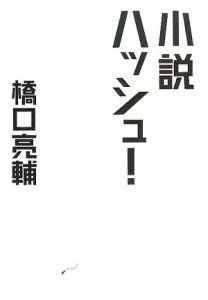 小説 ハッシュ!