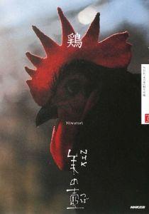『鶏』NHK「美の壷」制作班