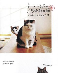 まこという名の不思議顔の猫3 三姉弟のラララな生活