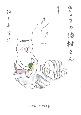 きょうの猫村さん (1)