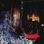 青い鳥(TYPE-B)(DVD付)