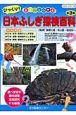 びっくり!日本ふしぎ探検百科 全3巻 まるごとわかる
