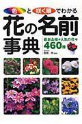 色と咲く順でわかる花の名前事典