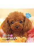 プチカレンダー わん 2010