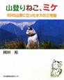 山登りねこ、ミケ 60の山頂に立ったオスの三毛猫