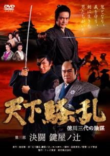 天下騒乱 徳川三代の陰謀
