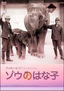 「ゾウのはな子」 千の風になってドラマスペシャル