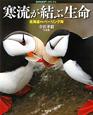 寒流が結ぶ生命 寺沢孝毅写真集 北海道からベーリング海