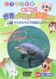 あつまれ!!世界のゆかいな動物たち 5 イルカとクジラを見にいこう!