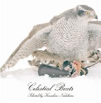 Celestial Beats selected by Kenichiro Nishihara