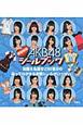 AKB48 きせかえシールブック チームB