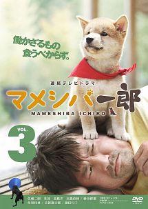 連続テレビドラマ マメシバ一郎