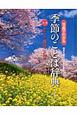 草もえる 春のことば 写真でわかる 季節のことば辞典1 四季を味わい感性を育む