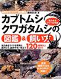 カブトムシ・クワガタムシの図鑑&飼い方 ワイド版・動物図鑑シリーズ