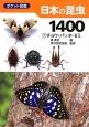 日本の昆虫1400 チョウ・バッタ・セミ(1)
