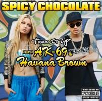 Turn It Up Feat.AK-69&Havana Brown