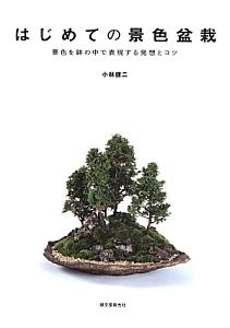 はじめての景色盆栽