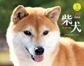 柴犬 カレンダー 2014