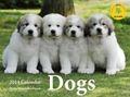 Dogs カレンダー 2014
