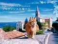 プロヴァンスの猫たちカレンダー 2014