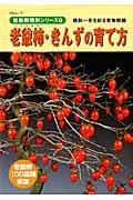 老爺柿・きんずの育て方 盆栽樹種別シリーズ8 晩秋〜冬を彩る実物樹種