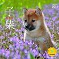 子柴カレンダー 2014
