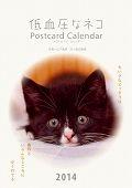 低血圧なネコ ポストカードカレンダー 2014