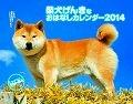 柴犬げんきなおはなしカレンダー 2014