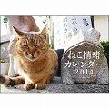 ねこ情緒カレンダー 2014