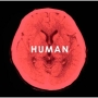 HUMAN(通常盤)