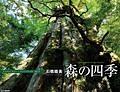 森の四季 カレンダー 2015