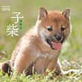 子柴カレンダー 2015